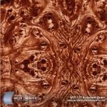 burlwood-grain-hydrographic-film