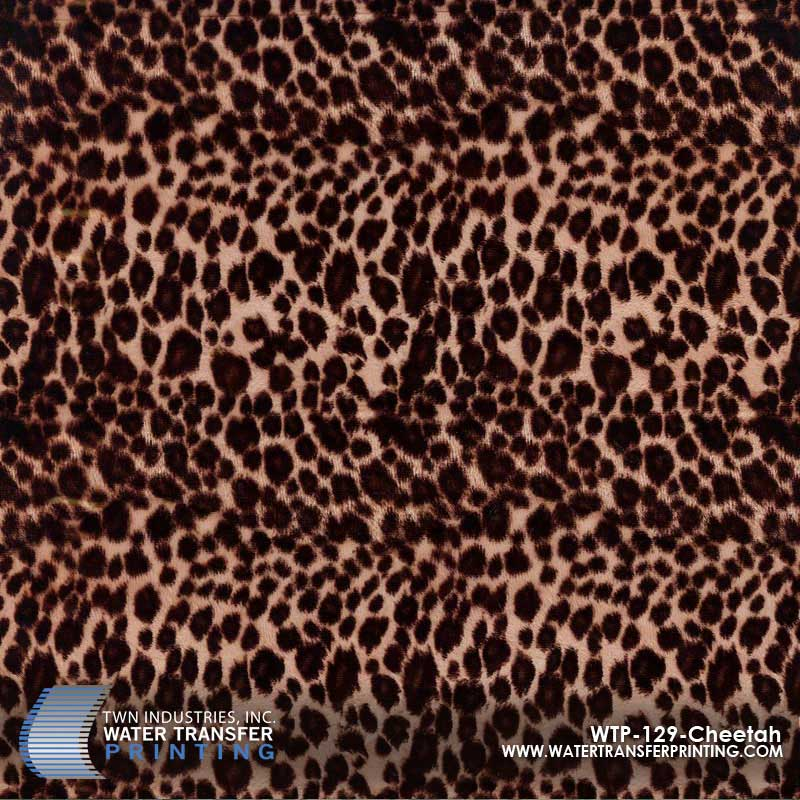 WTP-129 Cheetah Hydrographic Film