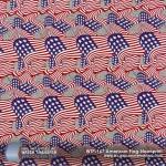 american-flag-newsprint-hydrographic-film