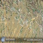 prairie-ghost-camo-hydrographic-film