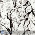 black-vein-hydrographic-film