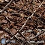 mathews-lost-camo-hydrographic-film