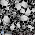 skullz-hydrographic-film