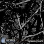 harvest-moon-camouflage-hydrographic-film
