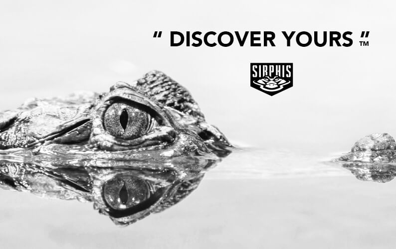 Sirphis - Discover Yours