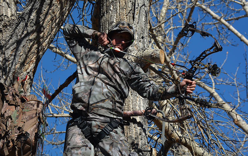 GO Wild Rock Star Tree Stand Mike Pawlawski